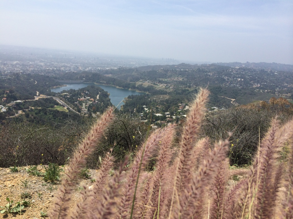 Magnificent view of Lake Hollywood reservoir